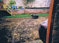 Garden 16