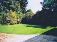 Garden 22